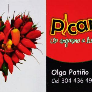 Picarte - Olga Patiño